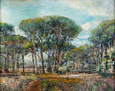 John Cobb, 'Mediterranean Pines, Ancient Ostia', 2018