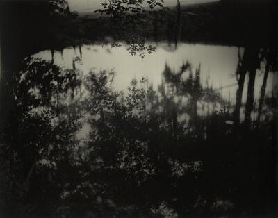 Sally Mann, 'Deep South, Untitled (Avery Island II)', 1998