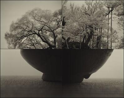 Keiichi Ito, 'Jindai_SAKURA (C883)', 2017