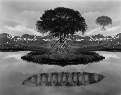 Jerry Uelsmann, 'Floating Tree', 1969