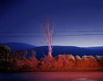 Gerard Byrne, 'A country road. A tree. Evening. Somewhere between Tonygarrow and Cloon Wood, below Prince Williams Seat, Glancree, Co. Wicklow.', 2007
