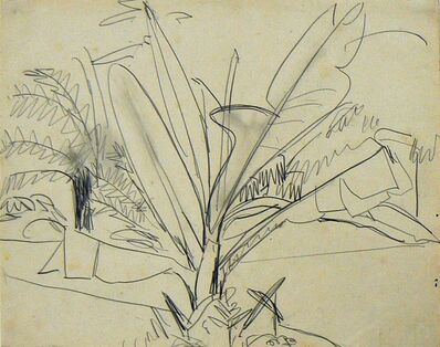 Ernst Ludwig Kirchner, 'Musapflanze (Bananenstaude, Park in Dresden)', 1911