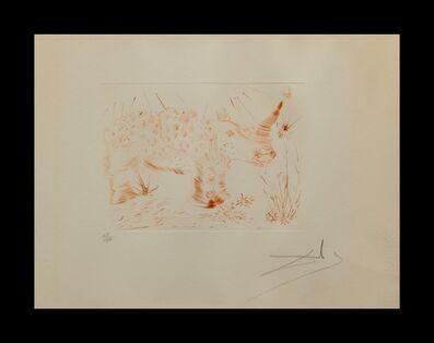 Salvador Dalí, 'Album Rhinoceros', Album Rhinoceros