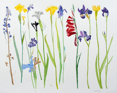 Elizabeth Blackadder, 'Wild Flowers', 2013