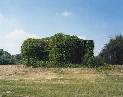 William Christenberry, 'Kudzu Devouring Building, near Greensboro, Alabama', 2004