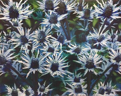 Leila Cartier, 'Blue Thistle', 2018