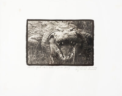 Peter Beard, 'Large Mugger Crocodile, Circa 15 - 16 Feet, Uganda', 1999