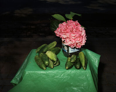 Lia Darjes, 'Stillleben mit Hortensie und Gurken, Kaliningrad', 2016
