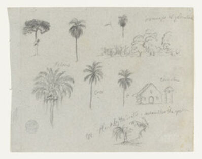 Frederic Edwin Church, 'Sketches from the Rio Magdalena, Colombia. Botanical sketches. A church.  ', 1853