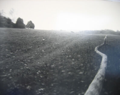 Sally Mann, 'Untitled (Virginia)', 1995