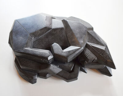 David Rudolph, 'Cat Wize'