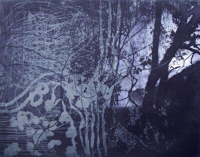 Ken Denning, 'aquatint Forêt VII', 2007