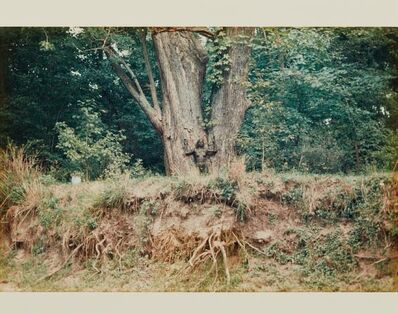 Ana Mendieta, 'Silueta Works in Iowa', 1976-1978