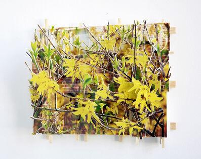 Isidro Blasco, 'Yellow Flowers', 2010