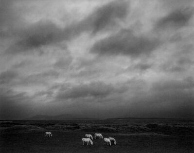 Pentti Sammallahti, 'Outer Hebrides, Scotland', 2008