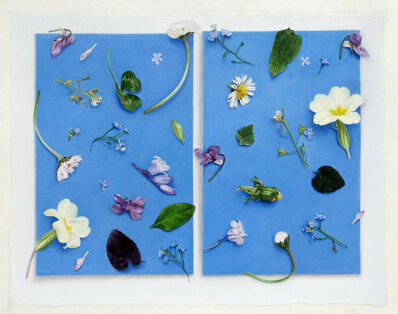 Claire Kerr, 'Illuminated Manuscript', 2015