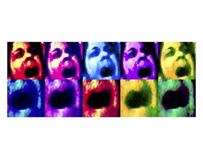Laila Shawa, 'Scream  ', 2011