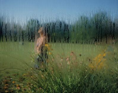 Carolyn Monastra, 'Wonderglass', 2000