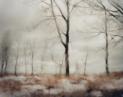 Todd Hido, 'Untitled, #10132, From the series Excerpts From Silver Meadows', 2011
