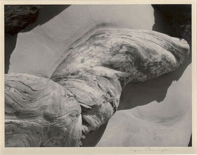 Imogen Cunningham, 'Log on Beach', 1948