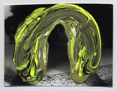 Andrea Pinheiro, 'Chamber 4 (Trellis)', 2011