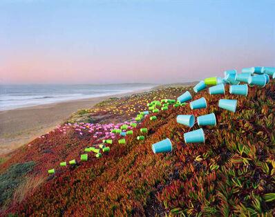Thomas Jackson, 'Cups No. 5, Point Reyes National Seashore, California', 2019