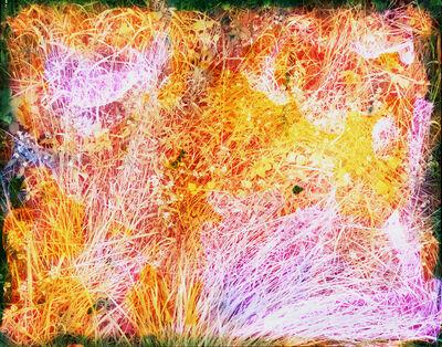 Tealia Ellis Ritter, 'Reenactment 101 (Lavender Grass)', 2014
