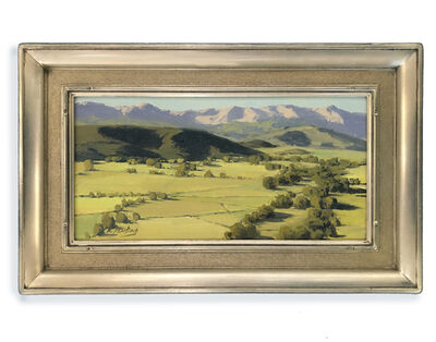 Kate Starling, 'Colorado Fields of Hay (landscape, mountains, lush)', 2020