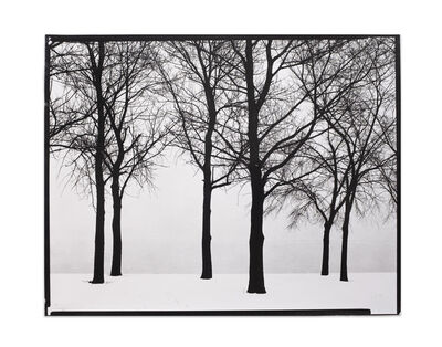 Harry Callahan, 'Chicago, Trees in Snow', 1950