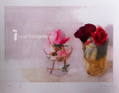 Antonio López García, 'Rosas de invierno 1 (Winter's Roses 1)', 2015