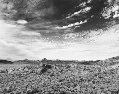 Jody Forster, 'Land of Magic, Organ Pipe National Monument, Arizona', 1977