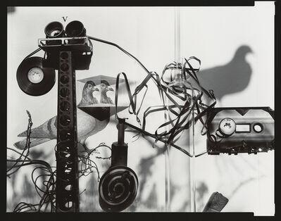 Olivia Parker, 'Feral Tape', 1984