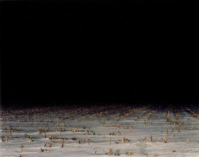 Nadav Kander, 'Field II', 2001
