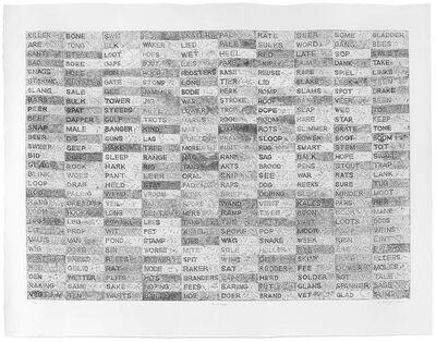 Willem Boshoff, 'Word Woes', 2014