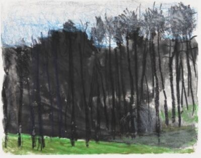 Wolf Kahn, 'Into the Woods and Uphill', 2011