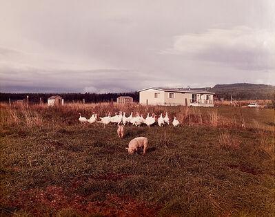 Joel Sternfeld, 'Troutdale, Oregon', 1980