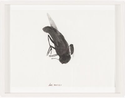 Jorge Macchi, 'Untitled (dos moscas)', 2002