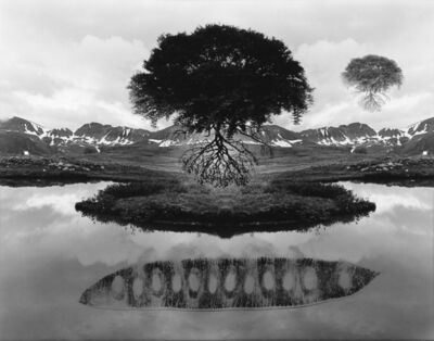 Jerry Uelsmann, 'Untitled (floating trees and pea pod)', 1970s