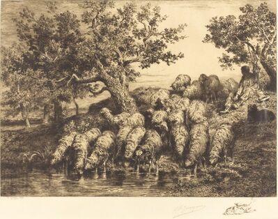 Charles Émile Jacque, 'Sheep at the Watering Place (Abreuvoir aux moutons)', 1888