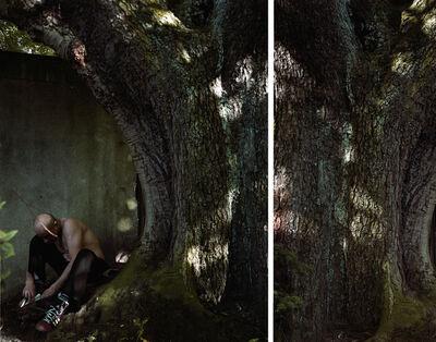 Valérie Jouve, 'Sans titre (Les Arbres)', 2006