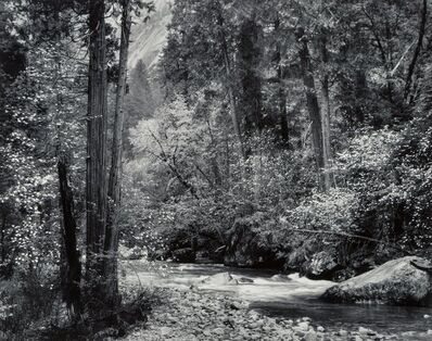 Ansel Adams, 'Tenaya Creek, Dogwood, Rain, Yosemite National Park, California', circa 1948