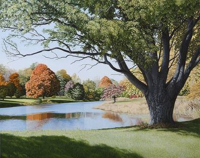 Anita Mazzucca, 'The Pond in Colts Neck Park', 2016