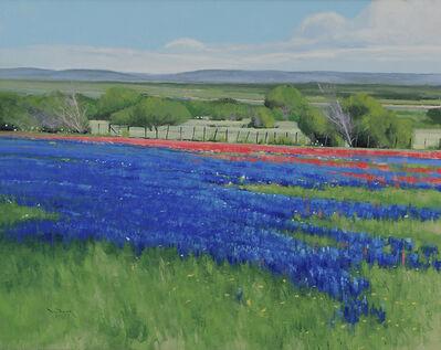 Ben Bauer, 'Texas Spring', 2014