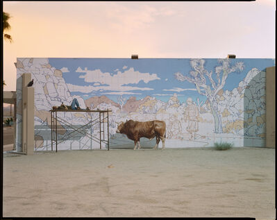 Richard Misrach, 'Bull Mural, Twentynine Palms, California, 2001', 2001