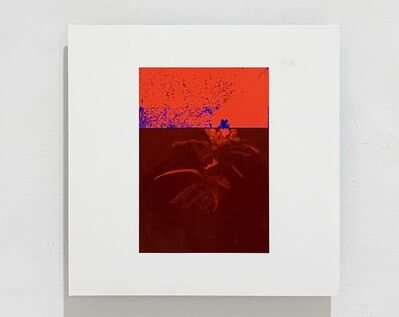 Federico García Trujillo, 'Almost-Decorative Red', 2019