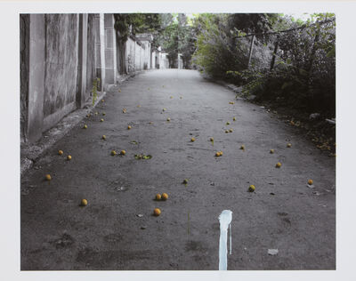 Honggoo Kang, 'The House - Apricot', 2010