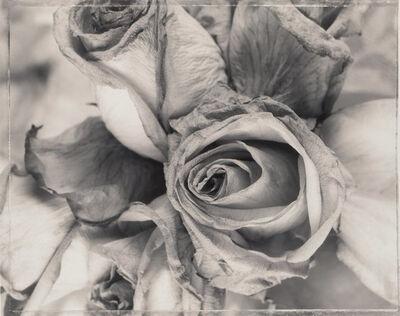 Ron van Dongen, 'Rosa Raphael', 1996
