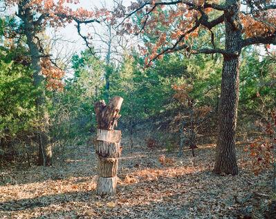 Adam Neese, 'Feeling Bad About Firewood', 2013