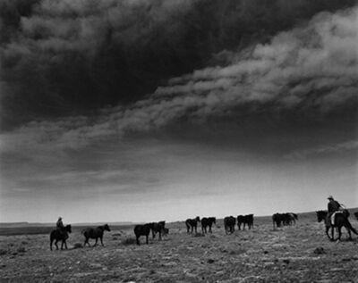 Kurt Markus, 'Cataract Land and Livestock Company, Williams, Arizona', 1985