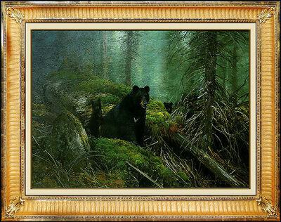 Michael Coleman, 'Michael B. Coleman Original Oil Painting on Board Signed Black Bear Wildlife Art', 1991